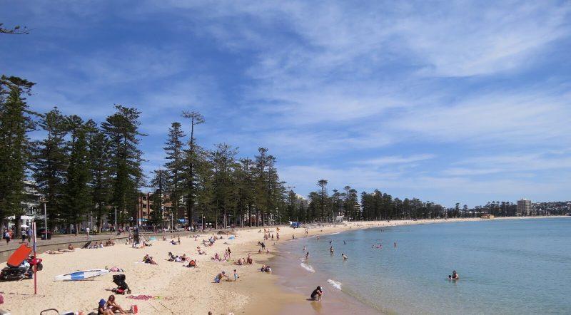 Manly Main Beach