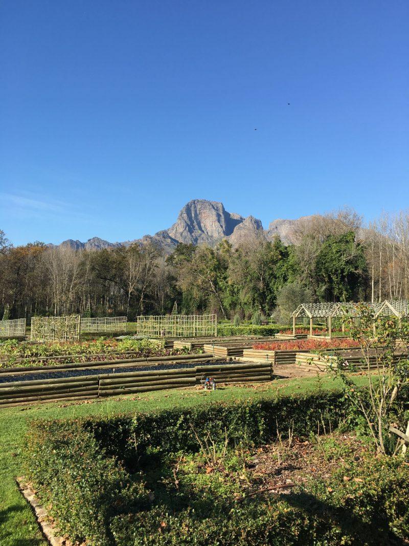 Boschendal-Cape-Winelands