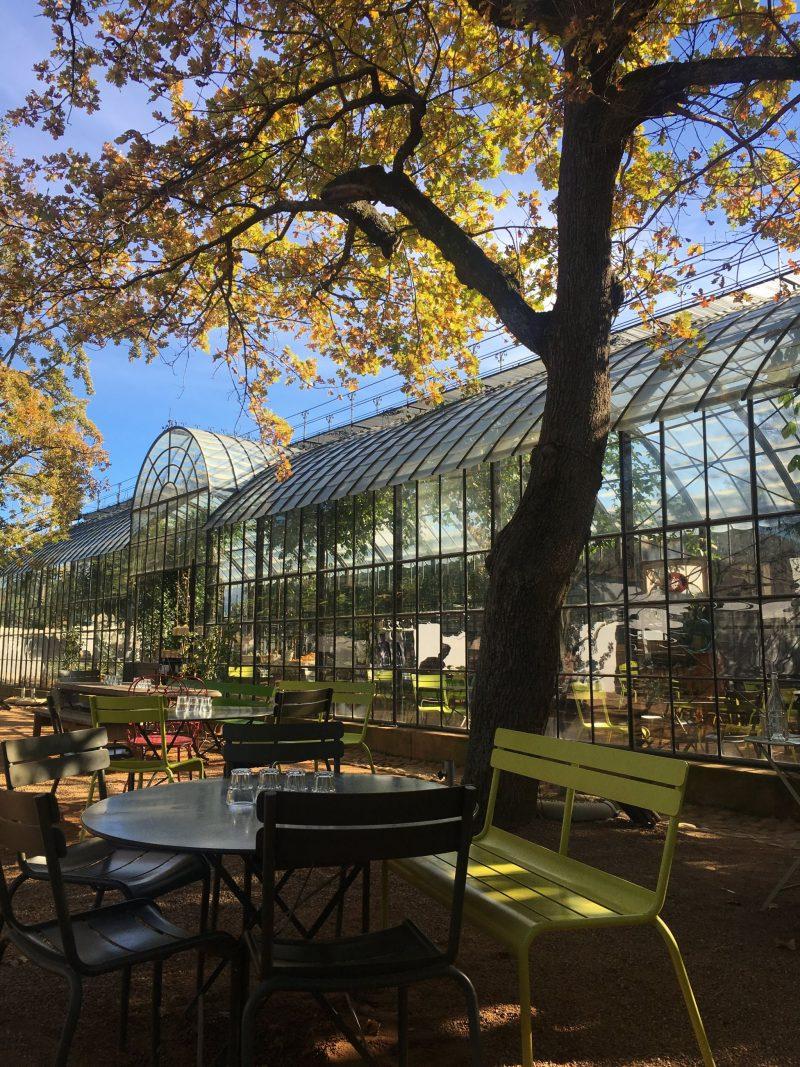Greenhouse-Babylonstoren-Cape-Winelands