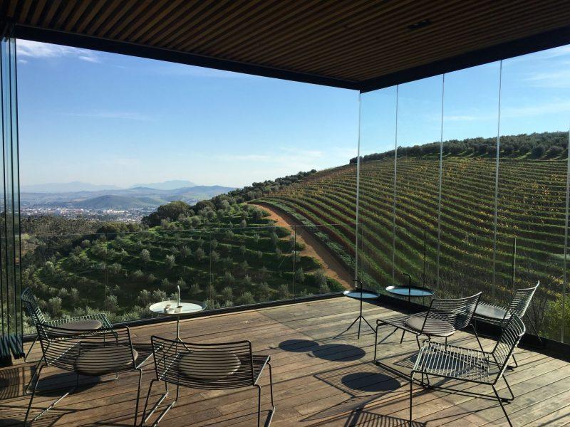 Tokara-Stellenbosch-wine-tasting-views